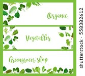 organic horizontal banners with ... | Shutterstock .eps vector #558382612