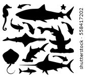 Vector Set Of Sea Marine Fish...