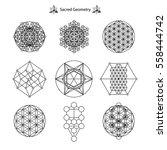 set sacred geometry vector... | Shutterstock .eps vector #558444742