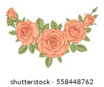 beautiful bouquet with vintage... | Shutterstock .eps vector #558448762