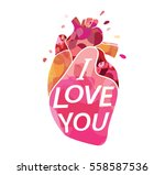 i love you. vector. greeting... | Shutterstock .eps vector #558587536
