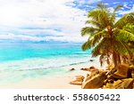 tropical island. the seychelles.... | Shutterstock . vector #558605422