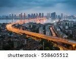 wuhan  hubei  china parrot... | Shutterstock . vector #558605512