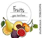 fruits drawn a color line on a... | Shutterstock .eps vector #558633496