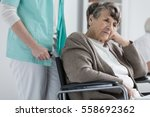 thoughtful senior woman on a... | Shutterstock . vector #558692362
