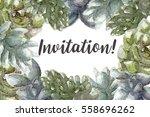 greeting card flowers... | Shutterstock . vector #558696262