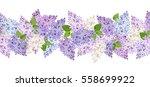 vector horizontal seamless... | Shutterstock .eps vector #558699922
