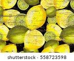Hand Drawn Fresh Lemon Pattern...