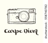 hand drawn contour illustration ... | Shutterstock .eps vector #558740782