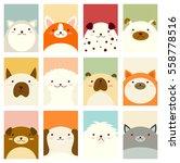 banner  background  flyer ... | Shutterstock .eps vector #558778516