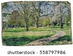 pathway in a park leading to a... | Shutterstock . vector #558797986