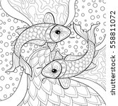 adult coloring book with fish... | Shutterstock .eps vector #558811072