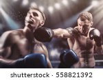 two professional boxers... | Shutterstock . vector #558821392