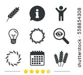agricultural icons. gluten free ... | Shutterstock .eps vector #558854308
