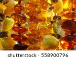 closeup various baltic amber...   Shutterstock . vector #558900796
