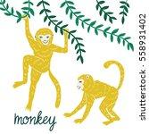 set of funny monkeys in... | Shutterstock .eps vector #558931402
