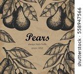 pear branch design template.... | Shutterstock .eps vector #558947566