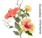 illustration of beautiful... | Shutterstock . vector #558949732