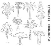 hand drawn set of trees. doodle ... | Shutterstock .eps vector #558958186