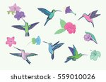 hummingbird vector pattern