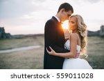 wedding couple. blonde bride... | Shutterstock . vector #559011028