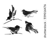 Sumi E Ink Collection Of Birds...