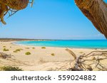 chrisi island beach view from... | Shutterstock . vector #559024882