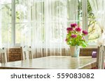 colorful flowers pots... | Shutterstock . vector #559083082