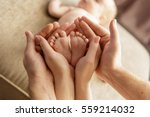 baby feet in parent hands | Shutterstock . vector #559214032