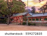 nagata shrine gate at dusk in... | Shutterstock . vector #559272835
