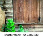 crop of old wood wall window... | Shutterstock . vector #559382332