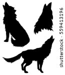 black silhouettes of howling... | Shutterstock .eps vector #559413196