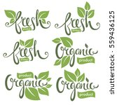 organic and fresh  hand drawn... | Shutterstock .eps vector #559436125