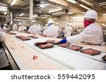 workers handle meat organizing... | Shutterstock . vector #559442095