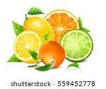 Fresh Citrus With Leaves....