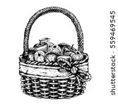 hand drawn basket with apples.... | Shutterstock .eps vector #559469545