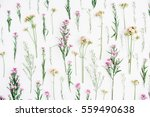 Stock photo floral pattern with pink and beige wildflowers green leaves branches on white background flat 559490638