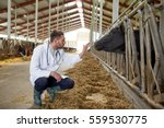 Stock photo agriculture industry farming people and animal husbandry concept veterinarian or doctor 559530775