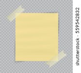 paper sheet on translucent... | Shutterstock .eps vector #559542832