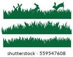 vector rabbits in green grass... | Shutterstock .eps vector #559547608