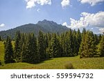 beautiful scenery on the small... | Shutterstock . vector #559594732
