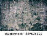 antique wall background | Shutterstock . vector #559636822