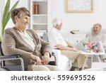 elders spending time together... | Shutterstock . vector #559695526