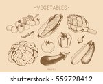 collection of hand drawn... | Shutterstock .eps vector #559728412