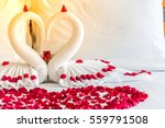 white two towel swans and red...   Shutterstock . vector #559791508