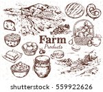 farm products sketch set with... | Shutterstock .eps vector #559922626