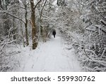 Small photo of Active man walks alone at a footpath in a forest with snow all over