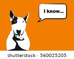 funny dog a bull terrier with a ... | Shutterstock .eps vector #560025205