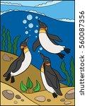 cartoon birds. three little...   Shutterstock .eps vector #560087356