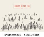 misty fog in pine forest on... | Shutterstock .eps vector #560104585